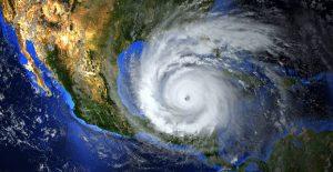 Hurricane and Impact Windows